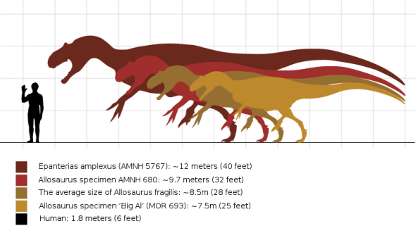 Epanterias compared to other dinosaurs
