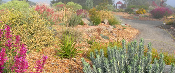 Kendrick Lake Park demonstrates the beauty and practicality of low-water gardening in the arid West. / Photo from Kendrick Lake Park