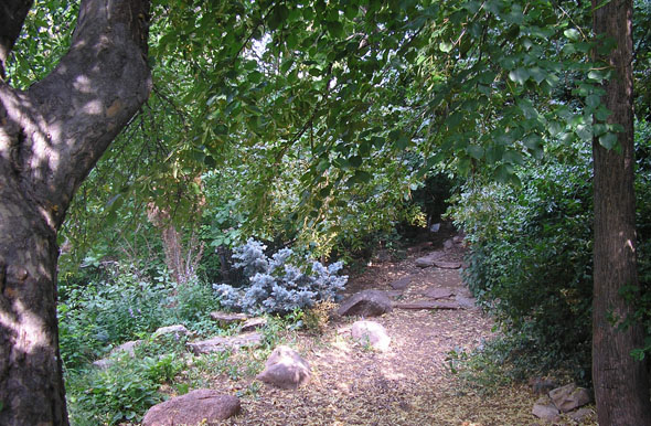 Wandering trails and shady nooks enhance the Andrews Arboretum. / Photo by Linda Cornett