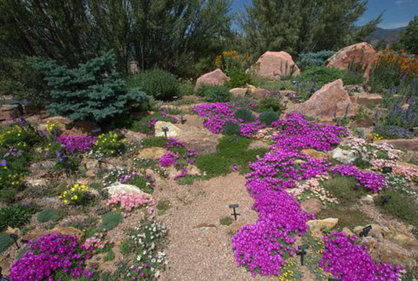 A xeriscape rock garden demonstrates the beauty of low-water plantings. / Photo from Pikes Peak Area Garden Help