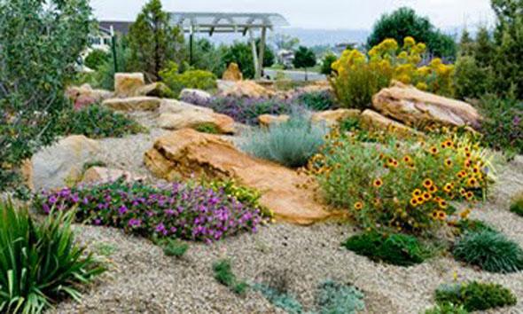Dryland landscaping is part of the educational mission of the Montrose Botanical Gardens. / Photo from Montrose Botanical Gardens