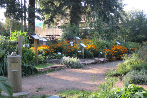 The HAS Demonstration Garden is a national prize winner. / Photo from Horticultural Art Society